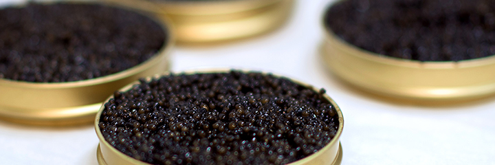 Caviar with Collagen Facial